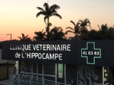 Clinique vétérinaire de l'Hippocampe
