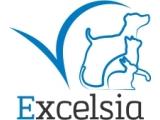 clinique vétérinaire Excelsia