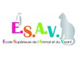 ESAV - Institut Bonaparte