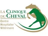 La Clinique du Cheva l- Centre Hospitalier Vétérinaire