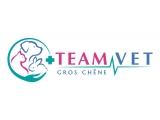 Teamvet Saint Etienne